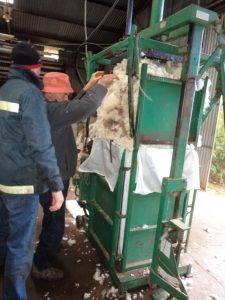 sheep shearing wool bale press