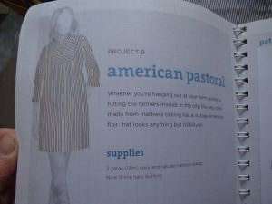 Built by Wendy Sewn by Lizzy other dresses American Pastoral