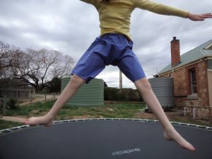 The experimental shorts The crushing verdict on the trampoline 2