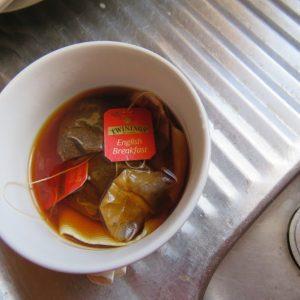 Makin it Magic The Japanese backpack tea