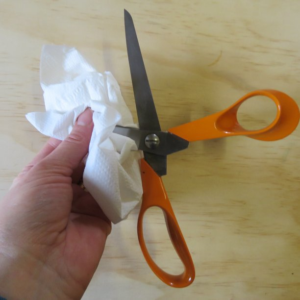 Cutting and scissors tips Wipe the blades