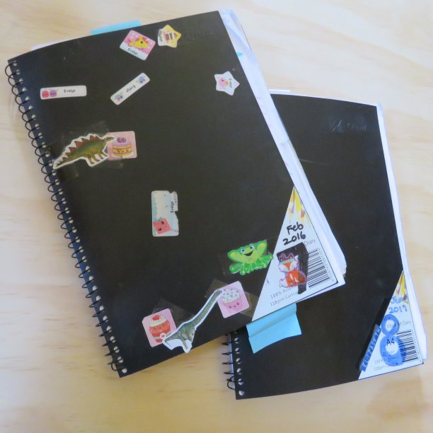 My journaling journey sketch books
